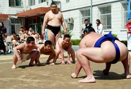 日本相扑在京献技图片