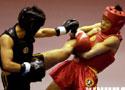 武术散打比赛选手晋级