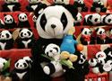 [组图]-雅典娜携手熊猫亲密接触现身成都