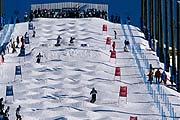 2006年都灵冬奥会 场馆简介一览