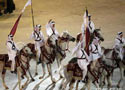 阿拉伯沙漠骑士