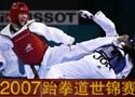 2007跆拳道世锦赛