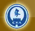 中国国际象棋协会